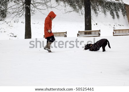 A woman walks with the dog in the park. - stock photo