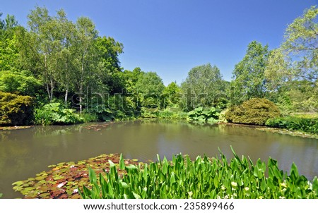 A wonderful English garden wth picturesque informal lake at RHS Rosemoor, Torrington, Devon, England. - stock photo