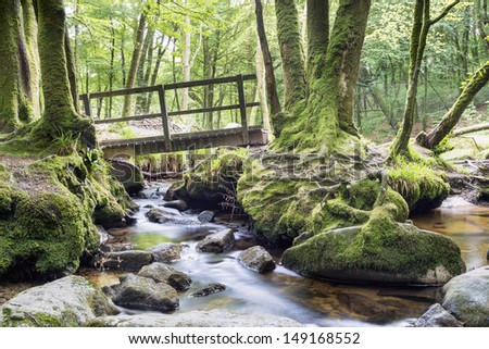 A wooden bridge crosses a stream running through ancient woodland on the southern edge of Bodmin Moor in Cornwall - stock photo