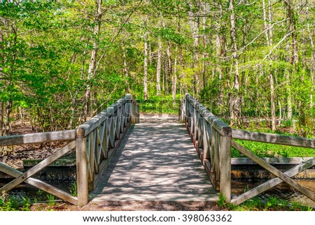 A wooden foot bridge through this Spring woodlands in Long Island. - stock photo