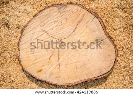 A Wooden Organic Background Texture
