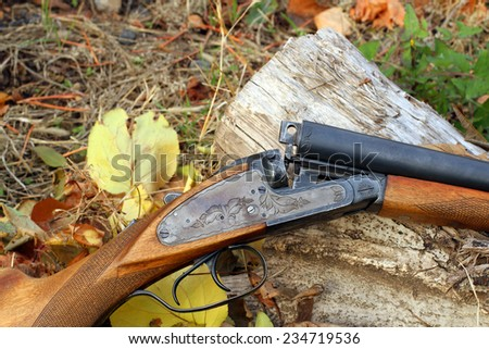 A wooden retro shotgun in autumn style close - stock photo