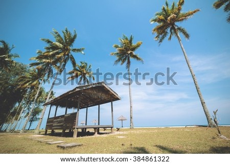 A wooden shack on a grassy seaside with blue sky and rows of coconut trees in the background.