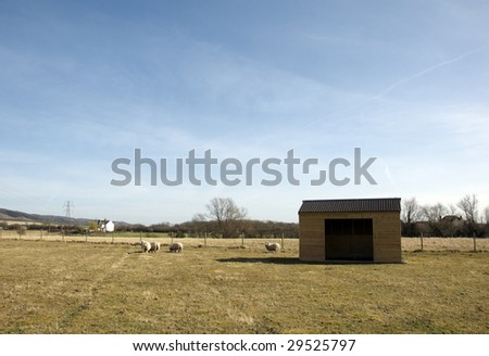 A wooden shed in field of grass