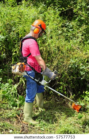 A worker using a brush cutter to cut down a jungle of undergrowth. Space for text against the greenery. - stock photo