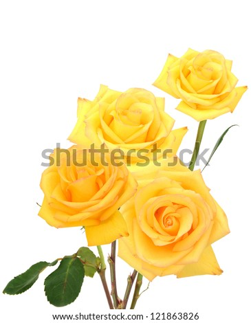 A yellow rose bouquet gift - stock photo