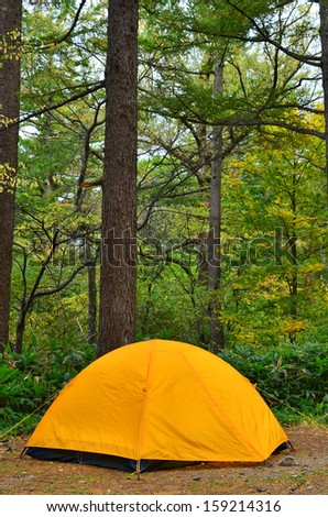 A yellow tent erected at a campsite in a forest. - stock photo
