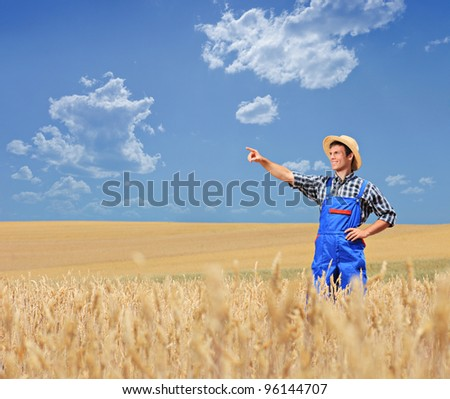 A young farmer pointing in a wheat field, Macedonia - stock photo