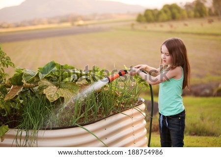 A young girl hosing her vegetable garden on the country