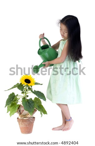 A young girl waters a big sunflower. - stock photo