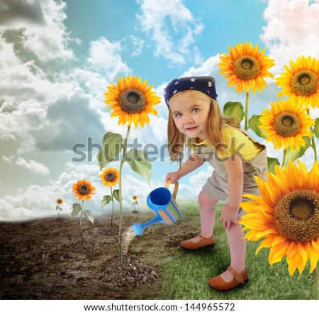 A young little girl is watering sunflowers in a field garden. One side is dry, the other side is in full bloom for an environment or nature concept. - stock photo