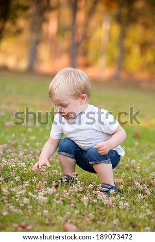 A young toddler child is outdoors picking clover flowers. The boy has blond hair and is wearing a white shirt and blue jeans. - stock photo