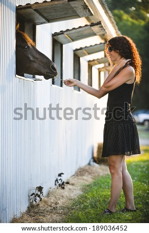 a young woman feeding a horse - stock photo