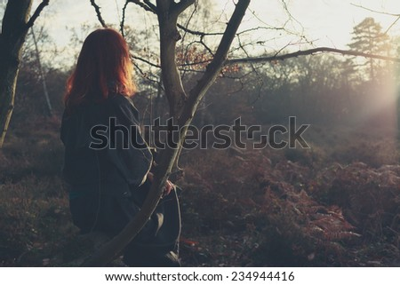 A young woman is sitting in a tree and is admiring the sunset