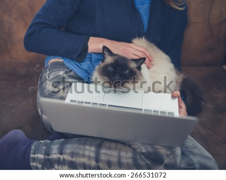 A young woman is using her laptop at home with a cat sitting on her lap - stock photo