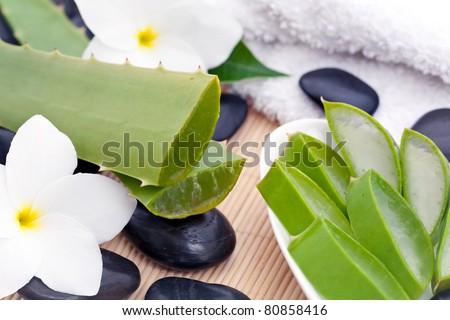 A zen still life of Aloe Vera plants with sliced Aloe Vera plant, white Frangipani flowers and black zen stones - stock photo