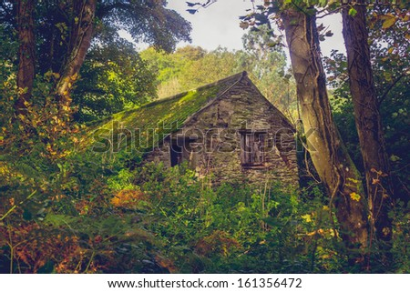 Abandoned cabin in the woods - stock photo
