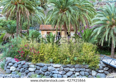 Abandoned farm house in the canyon Barranco de la Laja on La Gomera. The Barranco is a well watered ravine with barrages to irrigation the terraced fields. The gulch is situated on the west side - stock photo