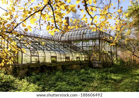 Overgrown Garden Stock Images Royalty Free Images