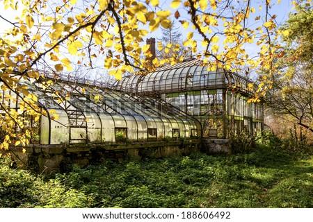 Abandoned greenhouse - stock photo