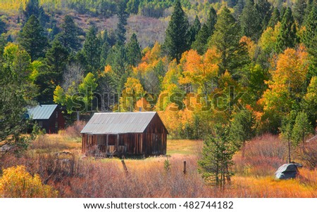 Abandoned house and fall foliage in Sierra mountains