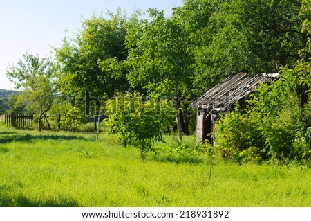 abandoned house surrounded by lush green grass and trees - stock photo