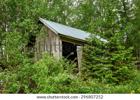Abandoned hut in a Finnish forest in spring - stock photo
