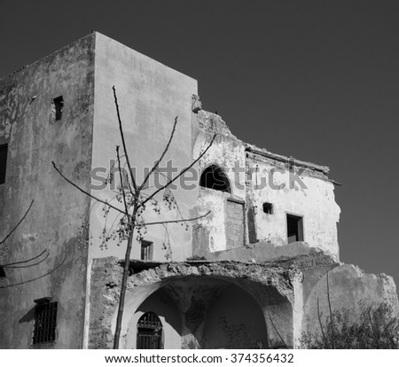 Abandoned ruined old house and a bare tree with dried fruits. Selective focus on the house. Aged photo. Black and white. - stock photo
