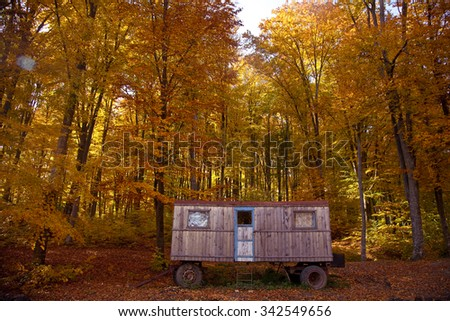 abandoned shack in forest - stock photo
