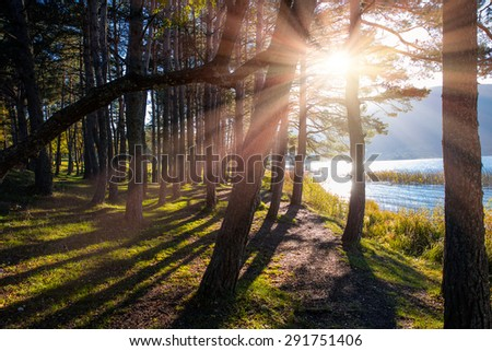 Abant Lake - stock photo