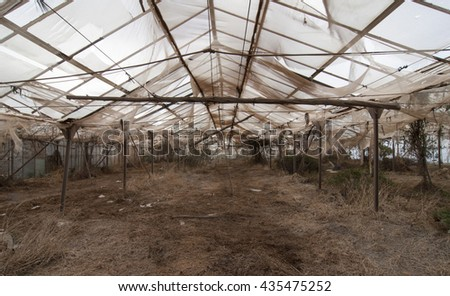 Abdandoned Greenhouse - Teneriffa