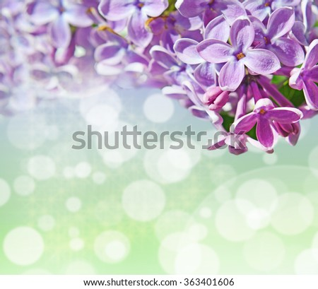 Abstrackt background with with lilacs for greetings Happy Valentine or wedding in pastel colors with effect bokeh and sparkles (March 8, February 14, Easter).