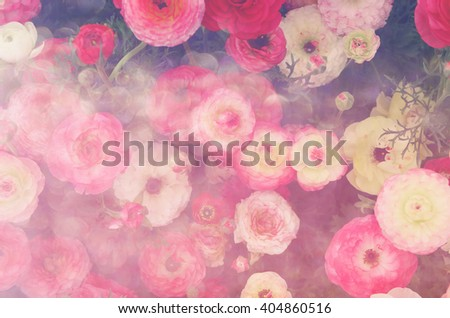 abstract and dreamy close up image of red spring flowers. top view photo. glitter overlay - stock photo