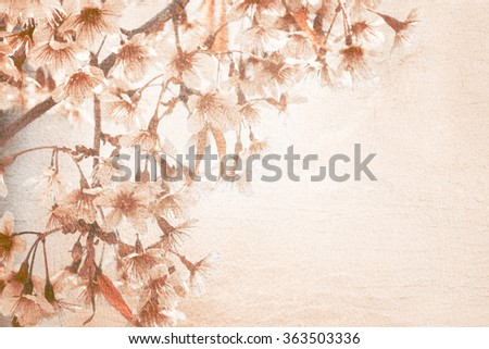 Abstract art Cherry blossom on gunge style background with copy space - stock photo