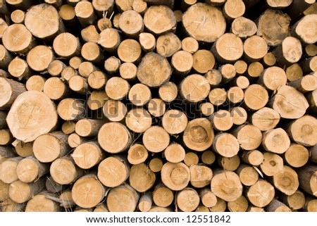 Abstract background from cuts of logs