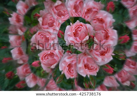 Abstract background from the flowers, kaleidoscope effect