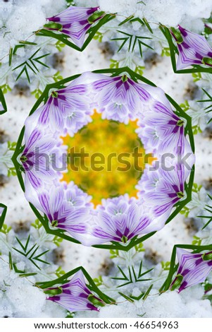 Abstract background, kaleidoscope of flowers on a white background