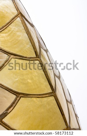 Abstract Background of shell lampshade textures and shapes.