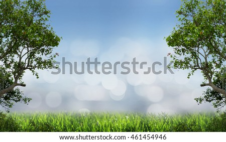 Abstract background of tree in green meadow with blurred background and bokeh of light.