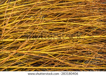 Abstract background of yellow wood cuttings. - stock photo