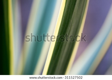 abstract background with colorful stripes - stock photo