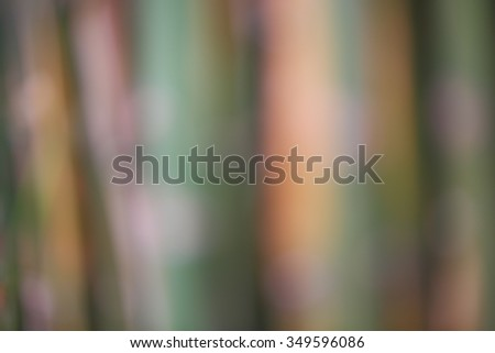 Abstract bamboo background,blur - stock photo