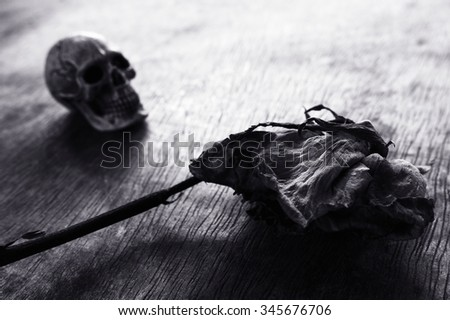 Abstract black and white withered rose with skull / Withered rose - stock photo