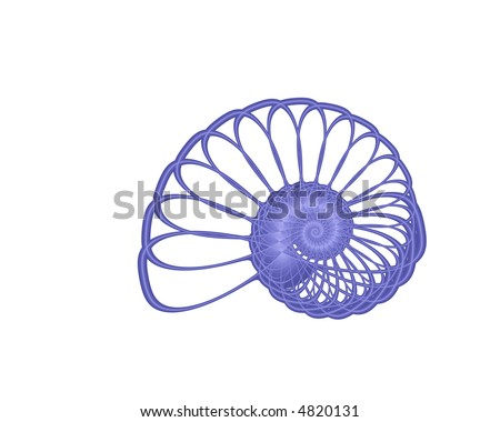 abstract blue nautilus spiral on white background