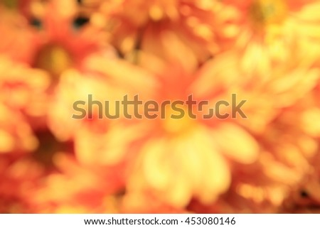 Abstract blurred of orange flower background