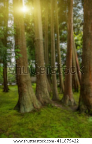 Abstract blurry background: Japanese Garden  - stock photo