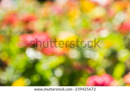Abstract bokeh and blurred colorful nature background model is used to enter text. - stock photo