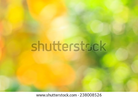 Abstract bokeh and blurred green nature background model is used to enter text. - stock photo
