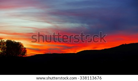 Abstract colorful sunset landscape with tree silhouette on front plan, wallpaper