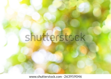 Abstract colourful bokeh and blurred background. - stock photo